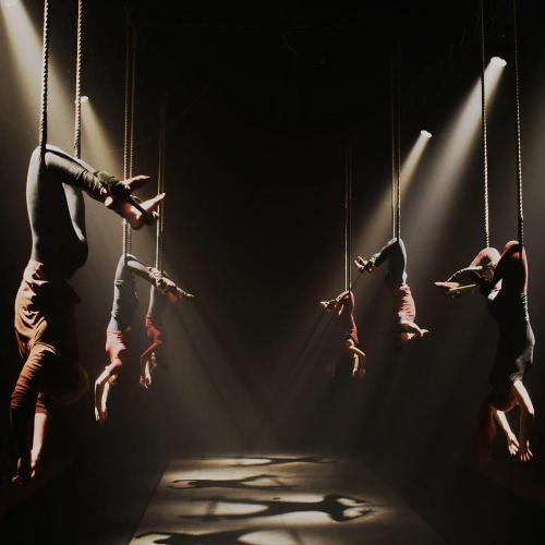 Contemporary Circus with Physical Theatre